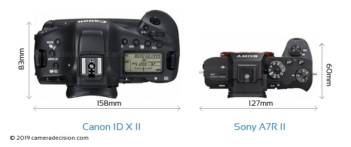 Canon 1D X II vs Sony A7R II Camera Size Comparison - Top View