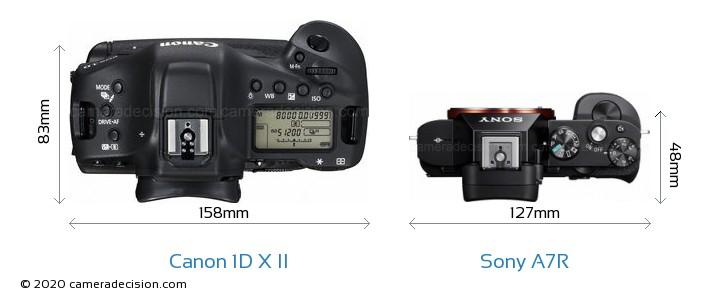 Canon 1D X II vs Sony A7R Camera Size Comparison - Top View