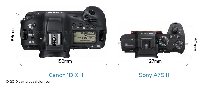 Canon 1D X II vs Sony A7S II Camera Size Comparison - Top View