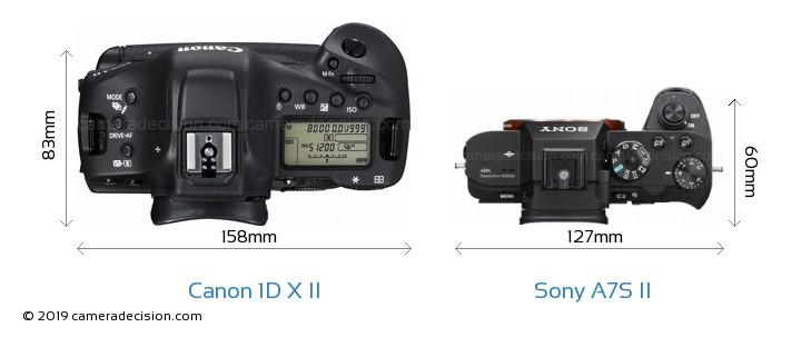 Canon 1D X Mark II vs Sony A7S II Camera Size Comparison - Top View