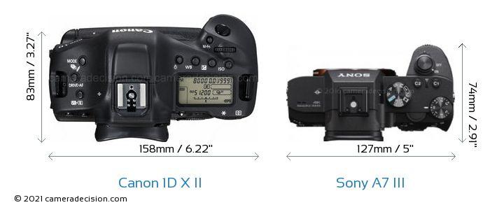 Canon 1D X II vs Sony A7 III Camera Size Comparison - Top View