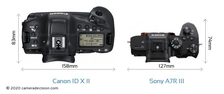 Canon 1D X II vs Sony A7R III Camera Size Comparison - Top View