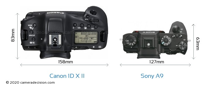 Canon 1D X II vs Sony A9 Camera Size Comparison - Top View