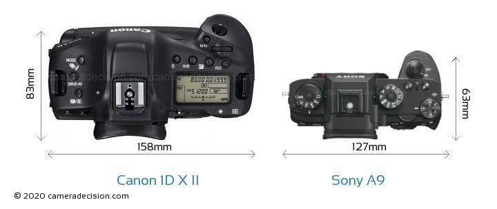 Canon 1D X II vs Sony A9 Camera Size Comparison - Top View