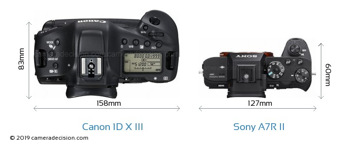 Canon 1D X III vs Sony A7R II Camera Size Comparison - Top View