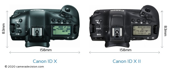 Canon 1D X vs Canon 1D X Mark II Camera Size Comparison - Top View