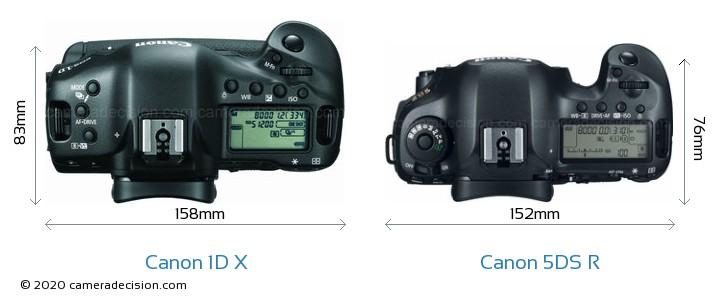 Canon 1D X vs Canon 5DS R Camera Size Comparison - Top View