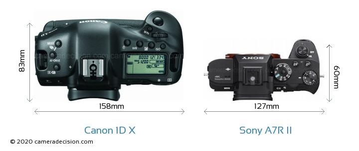 Canon 1D X vs Sony A7R II Camera Size Comparison - Top View