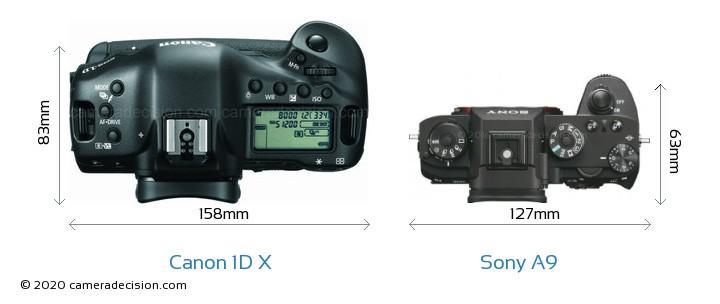 Canon 1D X vs Sony A9 Camera Size Comparison - Top View
