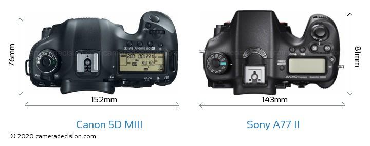 Canon 5D MIII vs Sony A77 II Camera Size Comparison - Top View