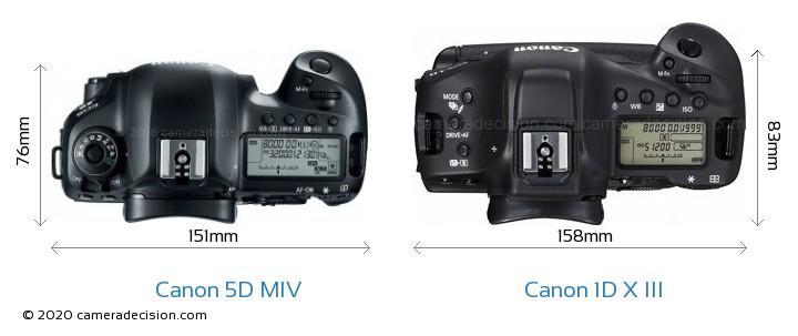 Canon 5D MIV vs Canon 1D X III Camera Size Comparison - Top View