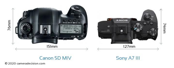 Canon 5D MIV vs Sony A7 III Camera Size Comparison - Top View