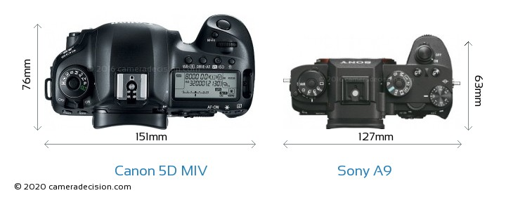 Canon 5D Mark IV vs Sony A9 Camera Size Comparison - Top View