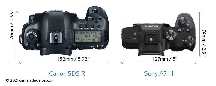 Canon 5DS R vs Sony A7 III Camera Size Comparison - Top View