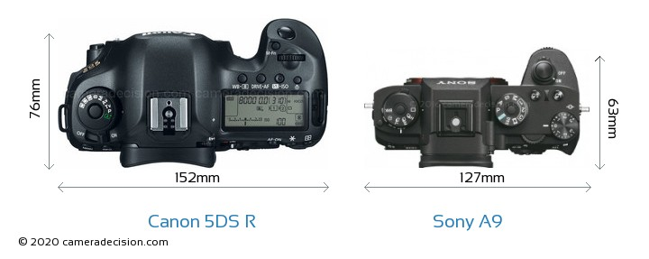 Canon 5DS R vs Sony A9 Camera Size Comparison - Top View