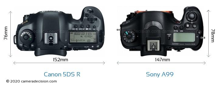 Canon 5DS R vs Sony A99 Camera Size Comparison - Top View