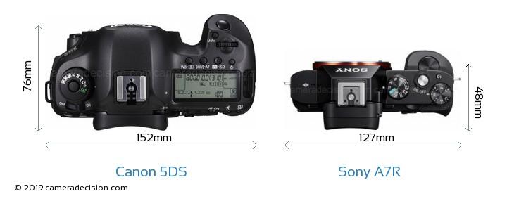 Canon 5DS vs Sony A7R Camera Size Comparison - Top View