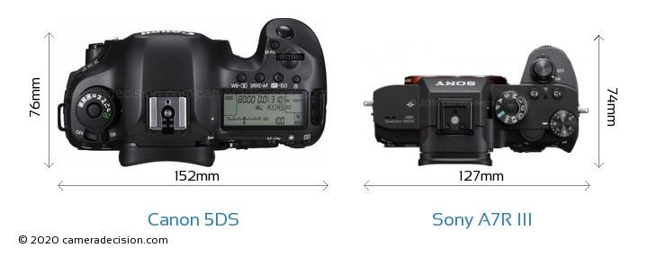 Canon 5DS vs Sony A7R III Camera Size Comparison - Top View