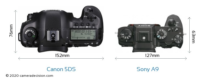 Canon 5DS vs Sony A9 Camera Size Comparison - Top View