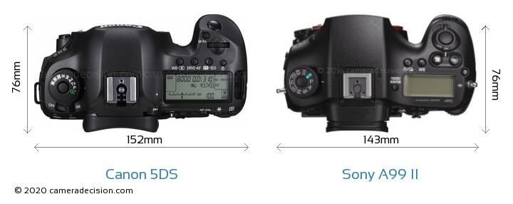 Canon 5DS vs Sony A99 II Camera Size Comparison - Top View