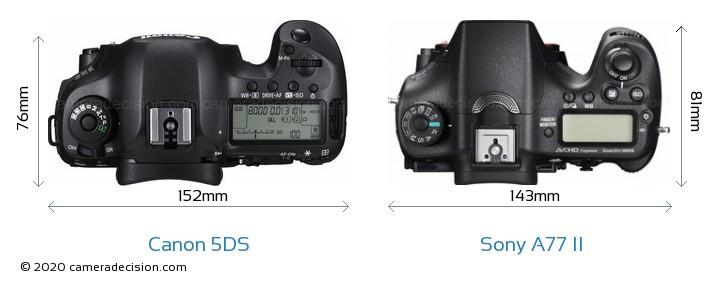 Canon 5DS vs Sony A77 II Camera Size Comparison - Top View