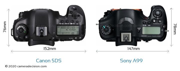 Canon 5DS vs Sony A99 Camera Size Comparison - Top View