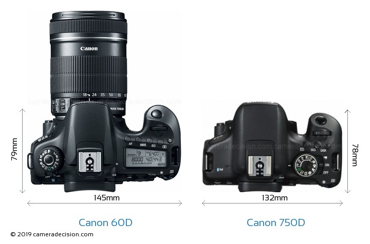Canon 60D vs Canon 750D Camera Size Comparison - Top View
