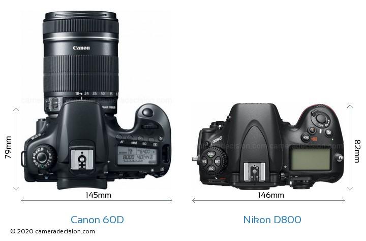 Canon 60D vs Nikon D800 Detailed Comparison