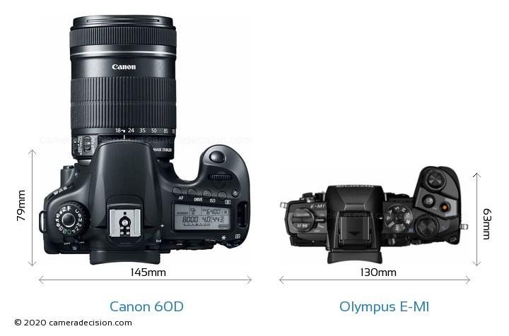 Canon 60D vs Olympus E-M1 Camera Size Comparison - Top View