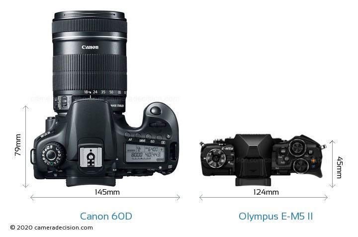 Canon 60D vs Olympus E-M5 II Camera Size Comparison - Top View