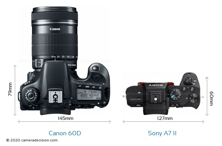 Canon 60D vs Sony A7 II Camera Size Comparison - Top View
