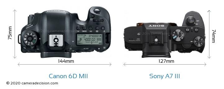 Canon 6D MII vs Sony A7 III Camera Size Comparison - Top View