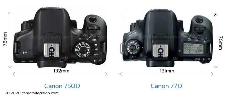 Canon 750D vs Canon 77D Camera Size Comparison - Top View