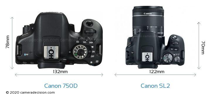 Canon 750D vs Canon SL2 Camera Size Comparison - Top View