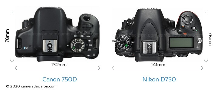Canon 750D vs Nikon D750 Camera Size Comparison - Top View