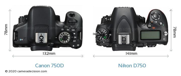 Canon 750D vs Nikon D750 Camera Size Comparison - Top View