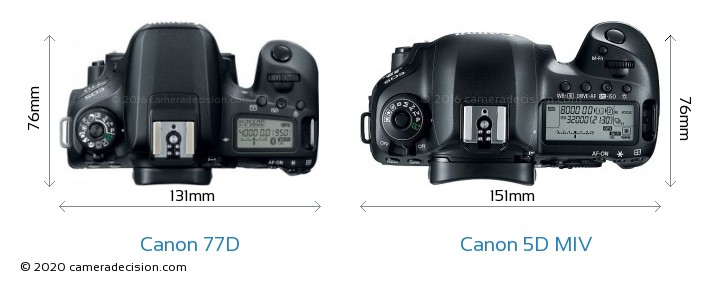 Canon 77D vs Canon 5D MIV Camera Size Comparison - Top View