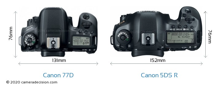 Canon 77D vs Canon 5DS R Camera Size Comparison - Top View