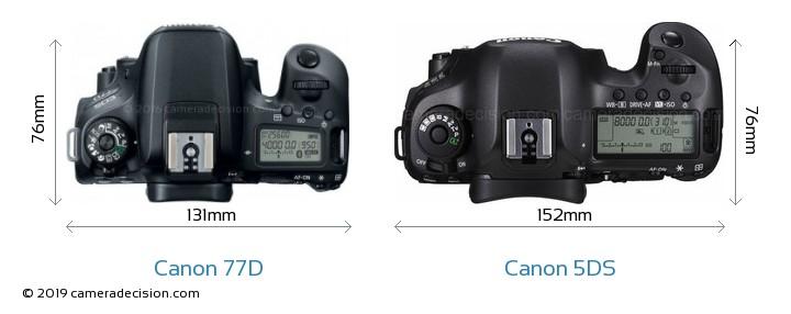Canon 77D vs Canon 5DS Camera Size Comparison - Top View