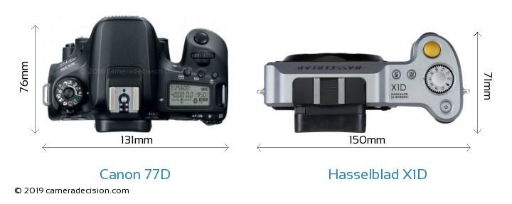Canon 77D vs Hasselblad X1D Camera Size Comparison - Top View