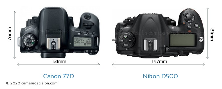 Canon 77D vs Nikon D500 Camera Size Comparison - Top View