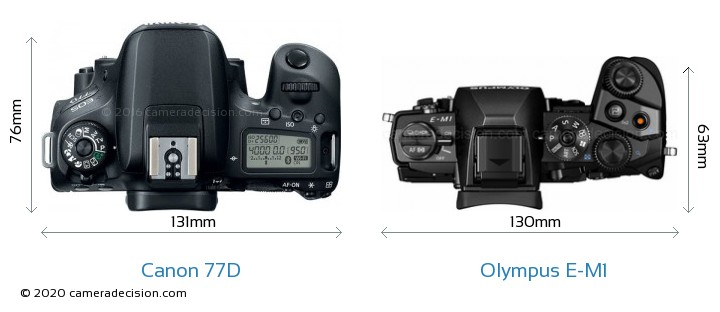 Canon 77D vs Olympus E-M1 Camera Size Comparison - Top View