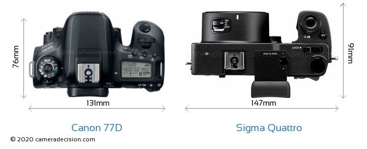 Canon 77D vs Sigma Quattro Camera Size Comparison - Top View