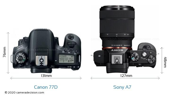 Canon 77D vs Sony A7 Camera Size Comparison - Top View