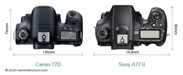 Canon 77D vs Sony A77 II Camera Size Comparison - Top View