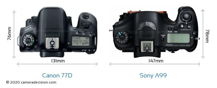 Canon 77D vs Sony A99 Camera Size Comparison - Top View