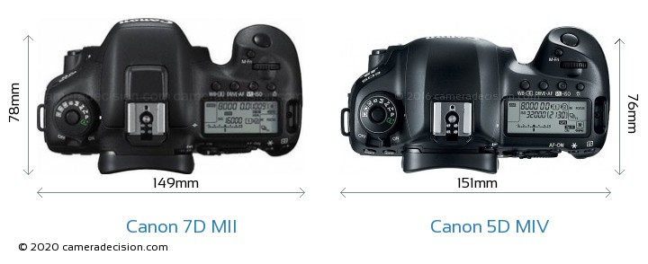 Canon 7D MII vs Canon 5D MIV Camera Size Comparison - Top View