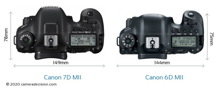 Canon 7D MII vs Canon 6D MII Camera Size Comparison - Top View