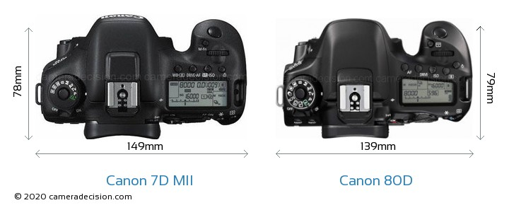 Canon 7D MII vs Canon 80D Camera Size Comparison - Top View