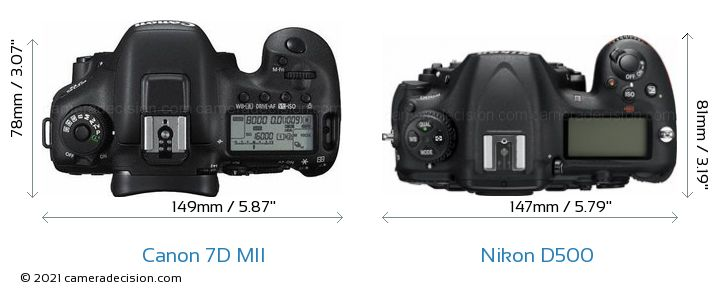Canon 7D MII vs Nikon D500 Camera Size Comparison - Top View